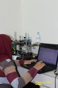 Optical Exp-Fiber Sensor